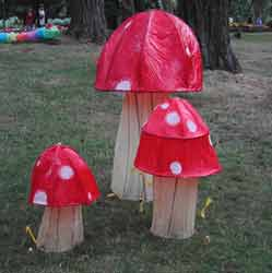 Mushrooms growing at the 2008 Luminara