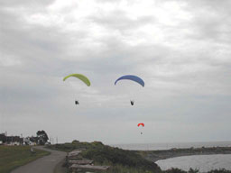 Paragliders abovr Clover Point Park