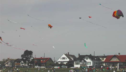 Kite Day at Clover Point - May 2005